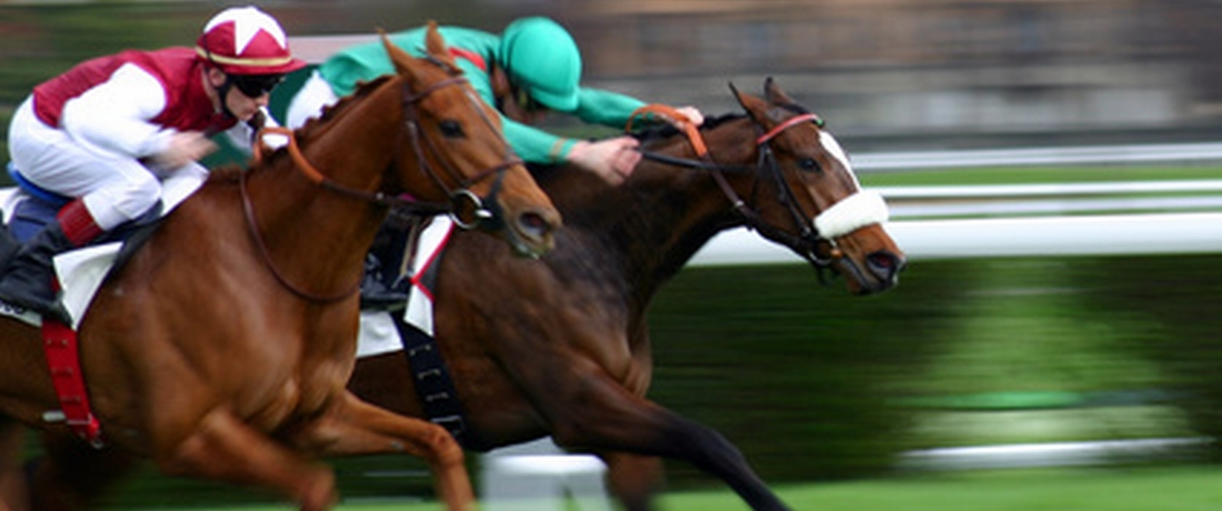 Online Horse Racing Betting in the USA